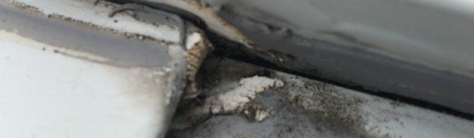雨漏り等による屋根の塗装工事前の現場調査|千葉県浦安市のO様邸