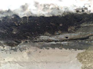 雨漏りに伴う屋上の防水工事(ウレタン塗膜・通気緩衝工法)|千葉県習志野市新津田沼の某賃家にて雨漏り修理