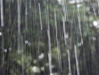 夏場のゲリラ豪雨による雨漏り対策
